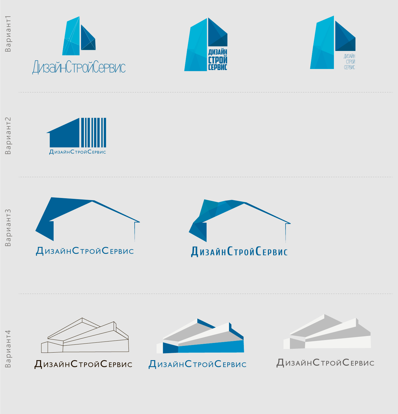 Designstroyservice sochi logo design construction for Remodeling companies