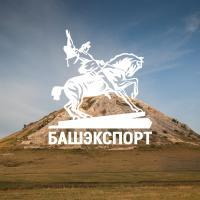 Создание сайта компании Башэкспорт (Уфа)