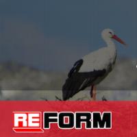 Салон мебели Reform, Сочи - мебель на заказ (одностраничный сайт)