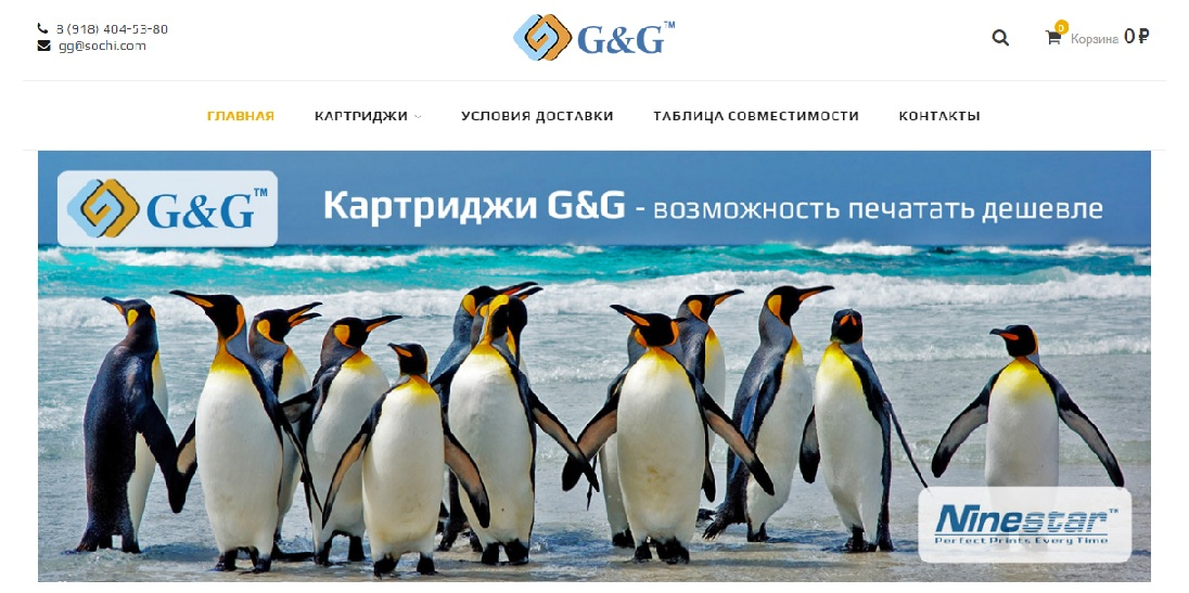 Home page screenshot of ggsochi.ru