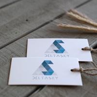 Разработка фирменного стиля Delta Sky, Сочи