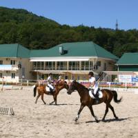 Центр конного спорта Сочи: адаптивный сайт на шаблоне